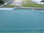 Очистка и Защита крыш от зарастания - foto 0